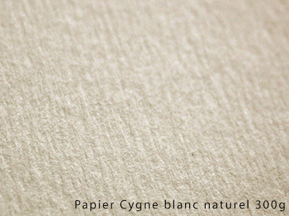 impression sur rives blanc naturel 250g